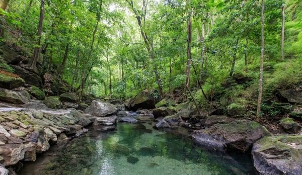 Hot Springs in Rio Perdido