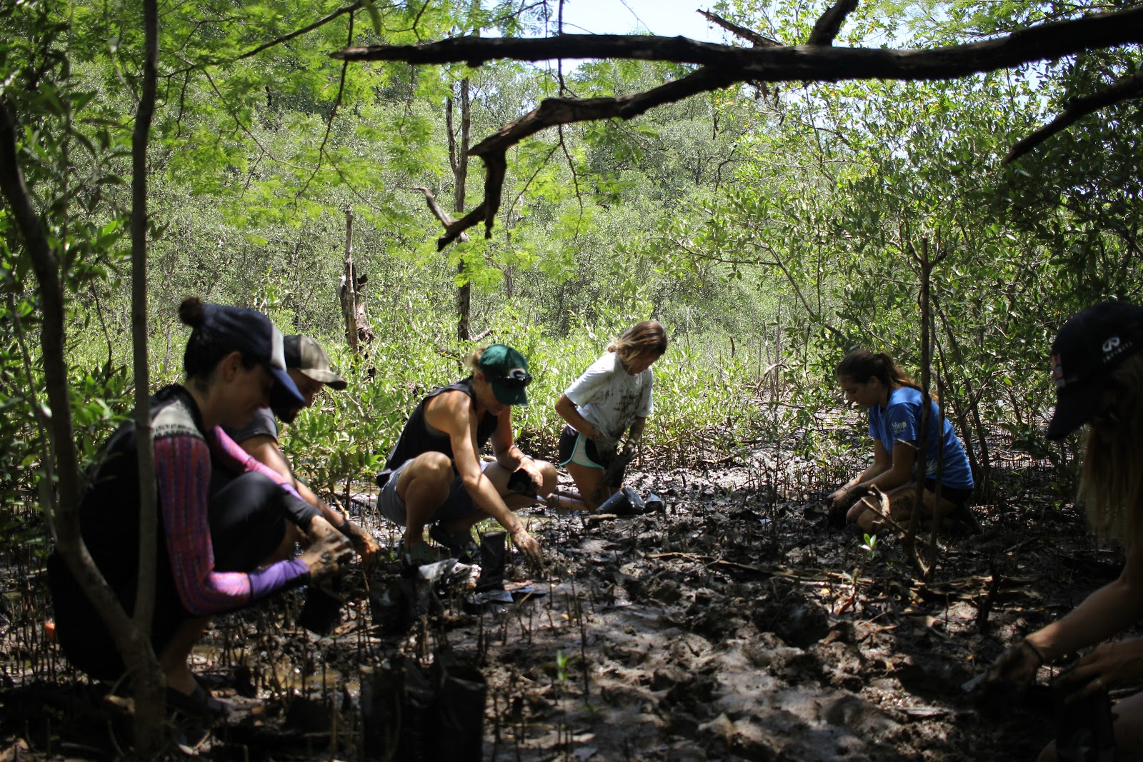 Students also set out into nature to learn about the ecosystems around Guanacaste